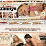 Free Tempting Trannys Trial Membership