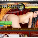 Ladyboy Ladyboy With Euros