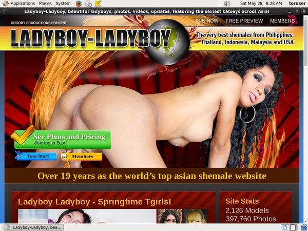 Ladyboyladyboy Get An Account