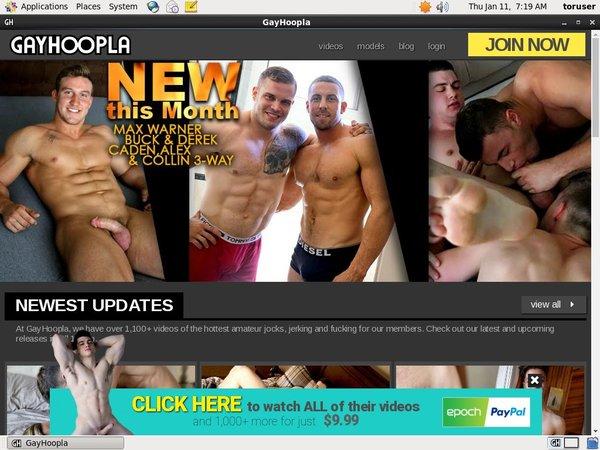 Hoopla Gay Free Logins