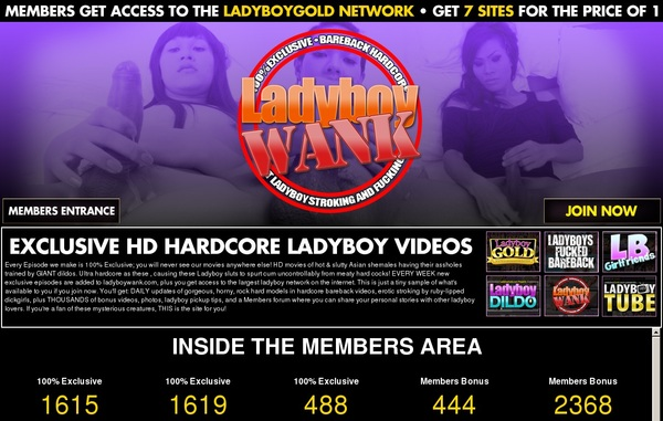Promo Ladyboywank.com